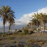 Tenerife 2014- (127)