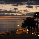 Tenerife 2014- (58)