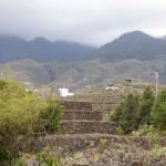 Tenerife 2014- (93)